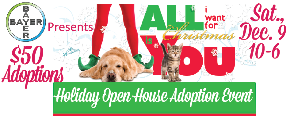 Sat only, all pet adoptions $50