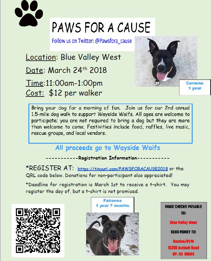 paws for a cause_18.jpg